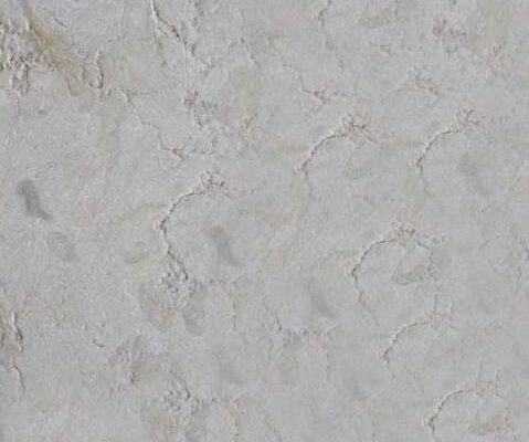 Jerusalem Cream Gold Limestone