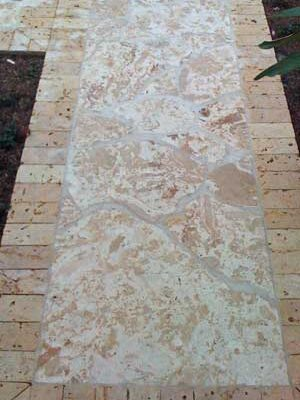 Dominican-Coral-Flagstone